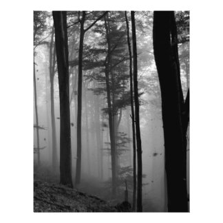 EERIE FOREST TREES LEAVES B&W FLYER