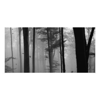 EERIE FOREST TREES LEAVES B&W PERSONALIZED PHOTO CARD