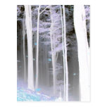 EERIE FOREST TREES LEAVES COLOR NEGATIVE POST CARD