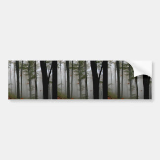 EERIE FOREST TREES LEAVES FULL FALL COLORS BUMPER STICKERS