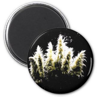 Eerie Glow Pampas Grass Magnet