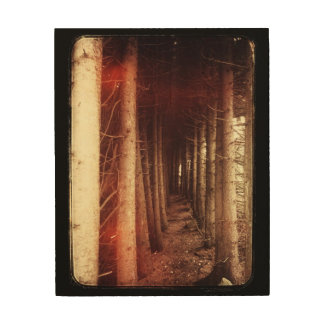 Eerie mysterious forest on wood canvas
