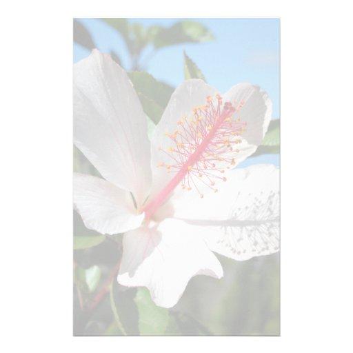 Efectos de escritorio blancos del hibisco papeleria personalizada