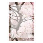 Efectos de escritorio de la flor de cerezo  papeleria