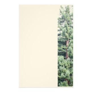 Efectos de escritorio del árbol de la secoya papelería personalizada