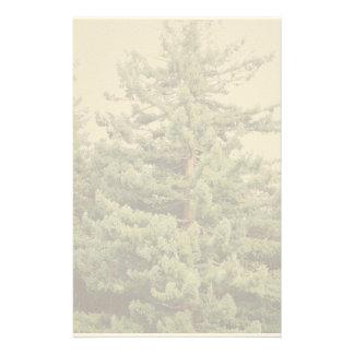 Efectos de escritorio del árbol de la secoya papeleria personalizada
