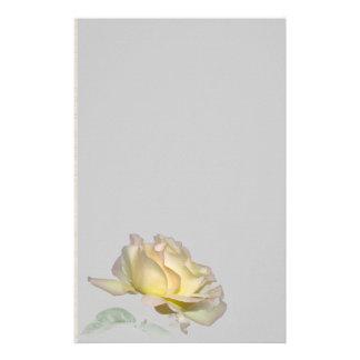 Efectos de escritorio del rosa amarillo papeleria