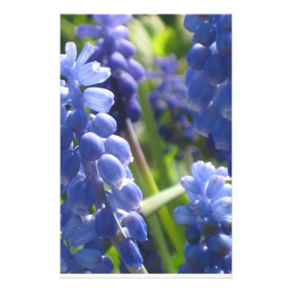 Efectos de escritorio - jacinto de uva papelería personalizada