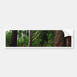 Efectos de la acuarela de la selva tropical pegatina para auto