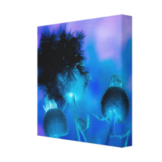 effect flower blue stretched canvas prints