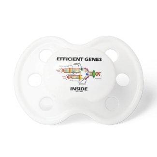 Efficient Genes Inside (DNA Replication) Pacifiers