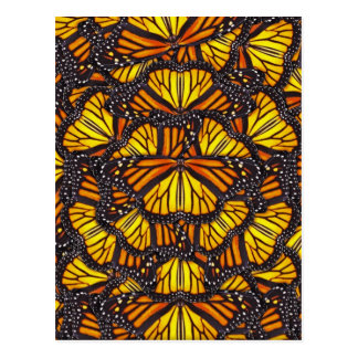 Effie's Butterflies Postcard