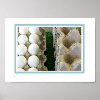 egg cartons poster