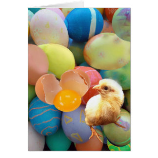 Egg-citing! Card