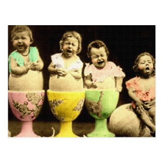 Egg Cup Babies Postcard