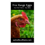 Egg Farming Rural Chicken Photo Double-Sided Standard Business Cards (Pack Of 100)