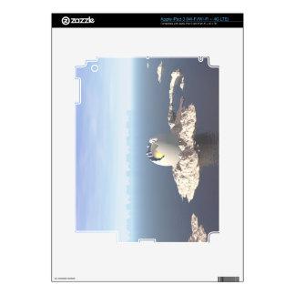 Egg Island Decal For iPad 3