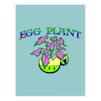 Egg Plant Postcard
