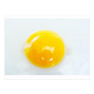 Egg Yolk Postcard