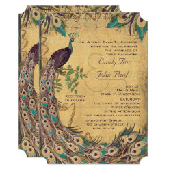 Eggplant Aqua  Peacock Vintage 3 Feathers Invitation