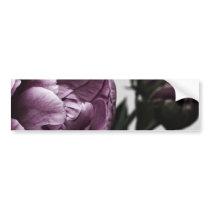 Eggplant Purple Peony Bumper Sticker