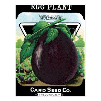 Eggplant Seed Packet Postcard