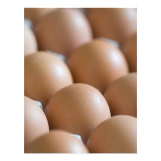"Eggs 8.5"" X 11"" Flyer"