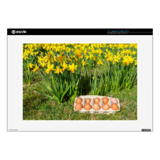 """Eggs in box on grass with yellow daffodils skins for 15"""" laptops"""