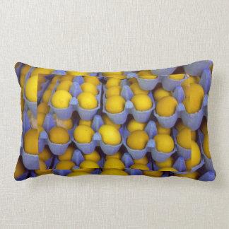 Eggs Lumbar Pillow