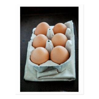 Eggs Postcard