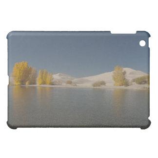Egin Lakes Case For The iPad Mini