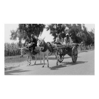 Egipcios con los carros y los burros circa 1934 tarjetas de visita