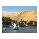 Egipto, Asuán, el río Nilo, veleros de Felucca, 2 Tarjeta Postal