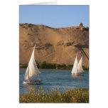 Egipto, Asuán, el río Nilo, veleros de Felucca, Tarjetas