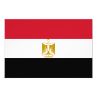 Egipto - bandera egipcia cojinete