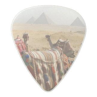 Egipto, El Cairo. Mirada de reclinación de los Plectro De Acetal