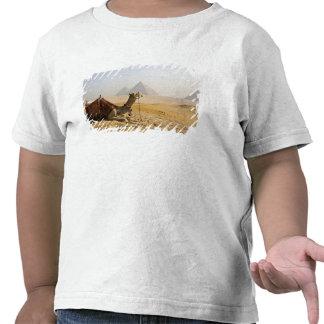 Egipto, El Cairo. Un camello solitario mira a Camiseta