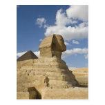 Egipto, Giza. El gran Sphynx sube sobre Tarjetas Postales