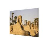 Egipto, Luxor. La avenida de esfinges lleva a Impresión En Lona Estirada