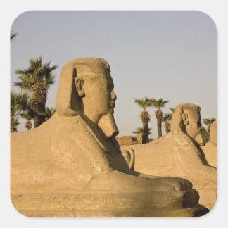Egipto, Luxor. La avenida de esfinges lleva a Calcomanía Cuadradas Personalizada