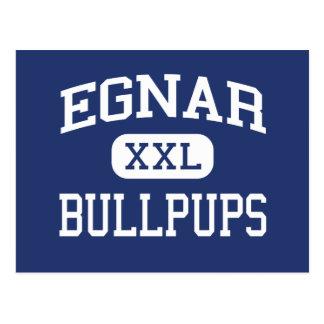 Egnar Bullpups Middle School Egnar Colorado Postcard
