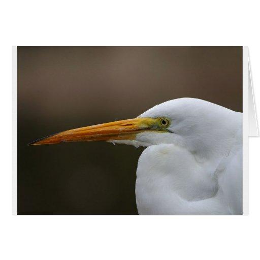 egret2 card