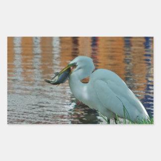 Egret and its catch rectangular sticker