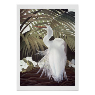 Egret and Palms Poster