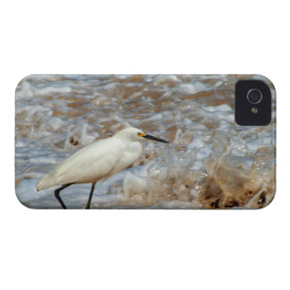 Egret and Wave Splash iPhone 4 Cover