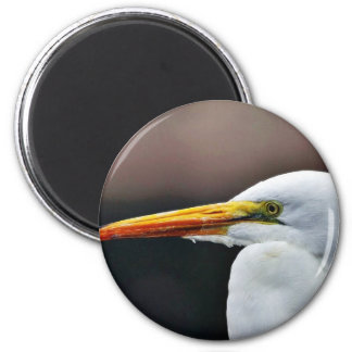 Egret Bird Animal Fridge Magnets