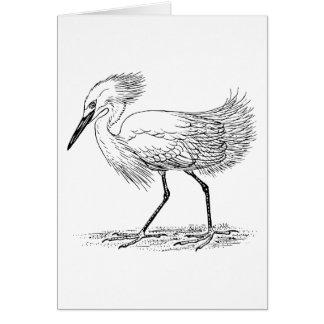 Egret Bird Illustration Card