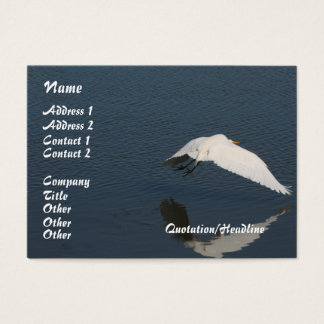 Egret Bird Wildlife Animals Wetlands Photography Business Card