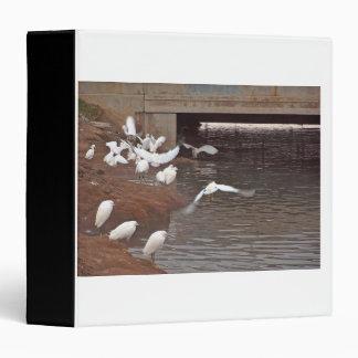 Egret Birds Wildlife Animal Photography 3 Ring Binder