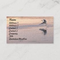 Egret Birds Wildlife Animals Photography Business Card